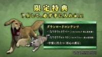 【游侠网】《怪物猎人崛起》限定特典演示(森林猫)