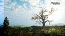 """[游侠网]《巫师3:狂猎》画质Mod""""E3FX""""v5版演示"""