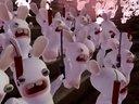 集萌呆傻逗一身的疯狂兔子